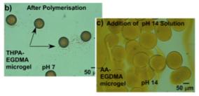 droplet - microgels.png