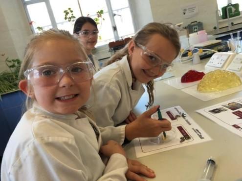 tissue-on-chip - workshop